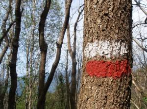 Marcas rojas y blancas de la ruta de senderismo desde Monte Ulía en San Sebastián hasta Pasaia